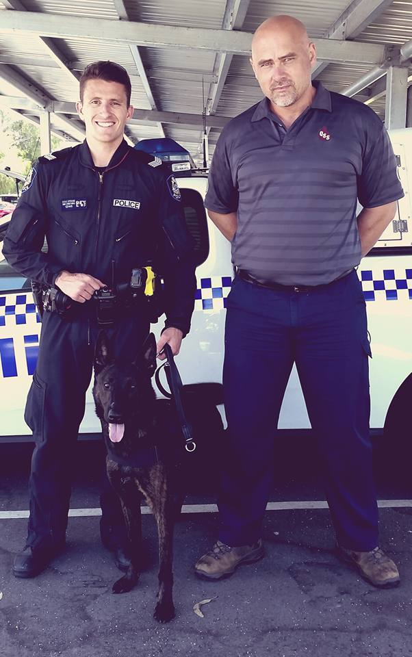 Edgar Dutch Shepherd Delivered In Person To New Handler - WA Police Force